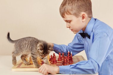 Young chessplayer with a cute kitten plays chess.