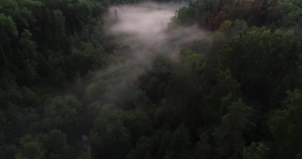 Přes zamlžené mystický les při západu slunce. Letecký pohled na les mezi kopci. Není vysoko nad Les v Evropě