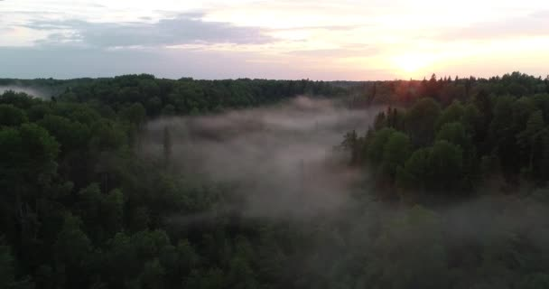 Flying over the misty mystical forest at sunset. Air view of a beautiful sunset over the forest. Fog in the forest at sunset.