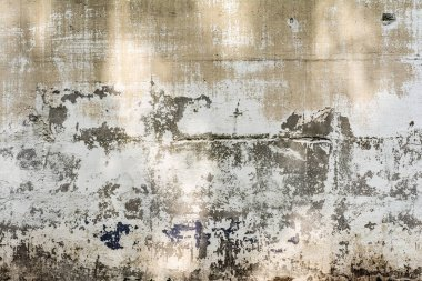 texture concrete wall with destroyed plaster layer and paint, shadow from trees, architecture abstraction background