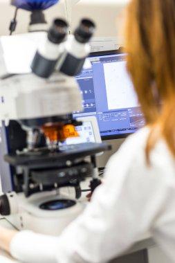 Helth care professional microscoping on hi-tec fluorescent microscope.