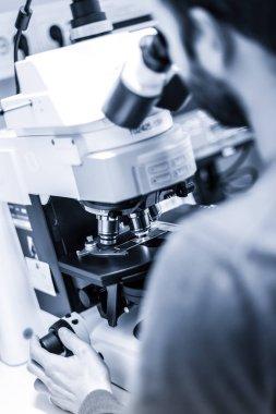 Scientist microscoping on fluorescent microscope.