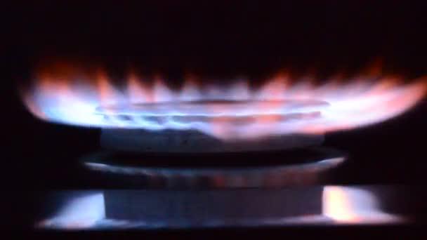 Plynový sporák hořící v kuchyni, modré plameny izolované na černém pozadí