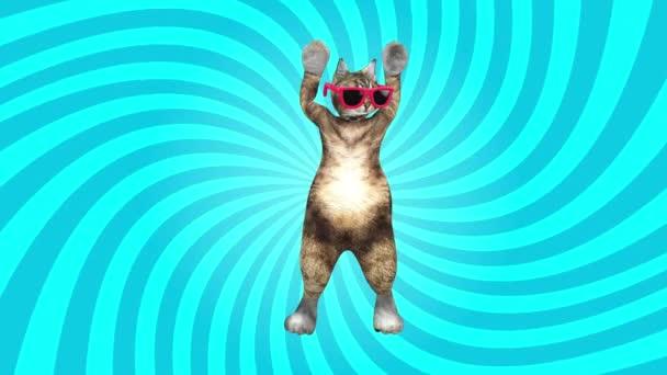 Comic Pussycat mozgatja a kék környezet stílusos ritmus