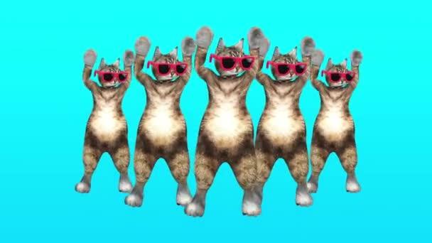 Comic-Pussycat bewegt sich in blauer Umgebung im stilvollen Rhythmus