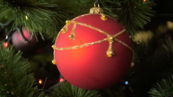 Closeup slow motion footage of rotating red bauble on Christmas tree branch