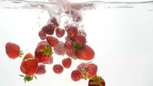 Closeup 4k záběry z čerstvých jahod a malin klesá ve vodě proti bílým pozadím