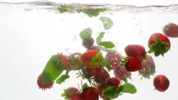 4 k videó a friss, érett eper, málna és menta levelek alá tartozó hideg vízben fehér háttér