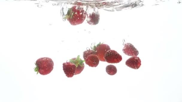 Detailní video z čerstvých zralých jahod a malin pomalu klesá a šplouchání v čisté vodě