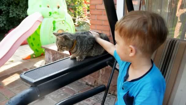 4k footage of 3 years old toddler boy caressing cat sitting on garden bench