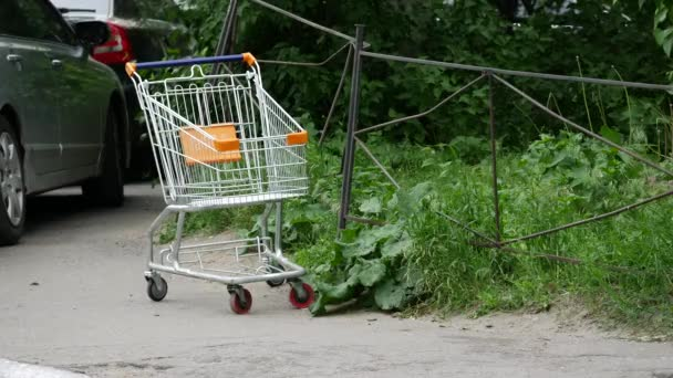 Abandoned standing cart from supermarket. Green tree and grass lawn. An empty