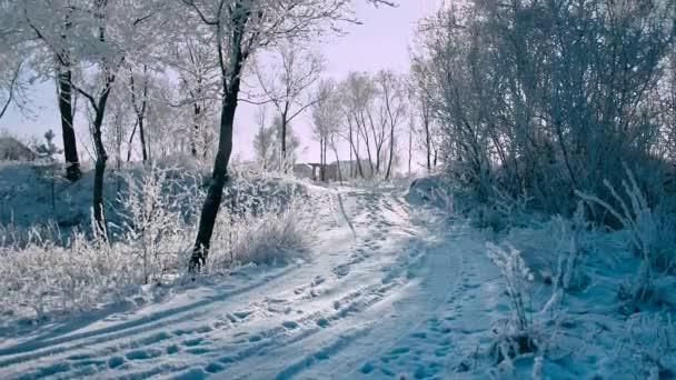 Krásný mrazivý Slunečné zimní krajina