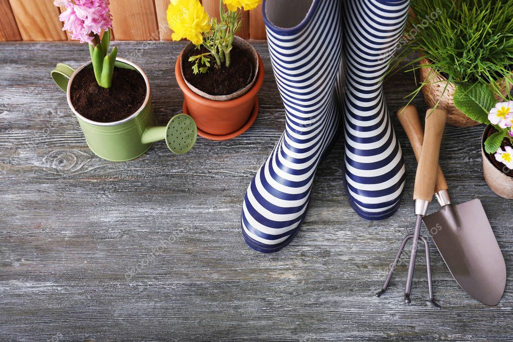 Gardening tools with gumboots and plants in pots on wooden background