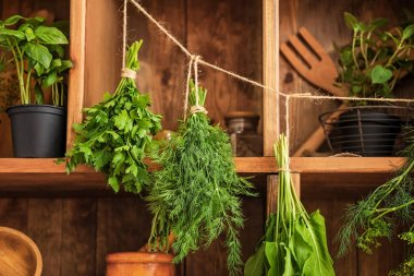 Pots and bunches with fresh herbs hanging on string near wooden shelves