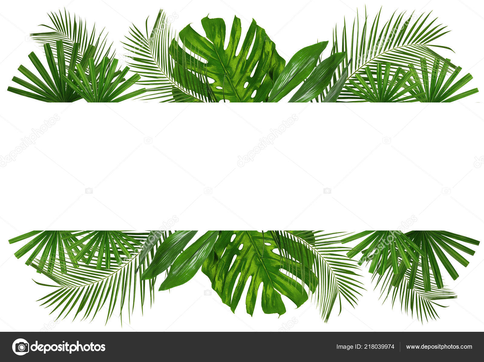 Composition Green Tropical Leaves White Background Stock Photo C Serezniy 218039974 Four green tropical leaves on a white background a set of four art prints. depositphotos