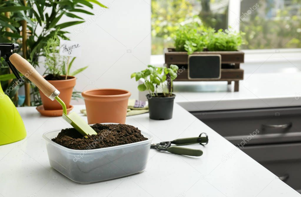 Plastic container with soil and gardening equipment on white table