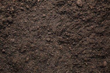 Heap of soil, closeup