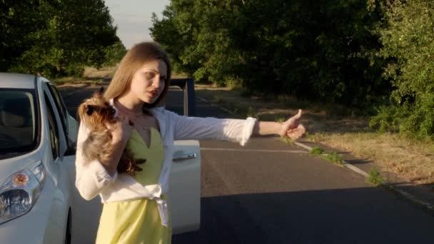 Beautiful woman with cute dog near broken car in countryside