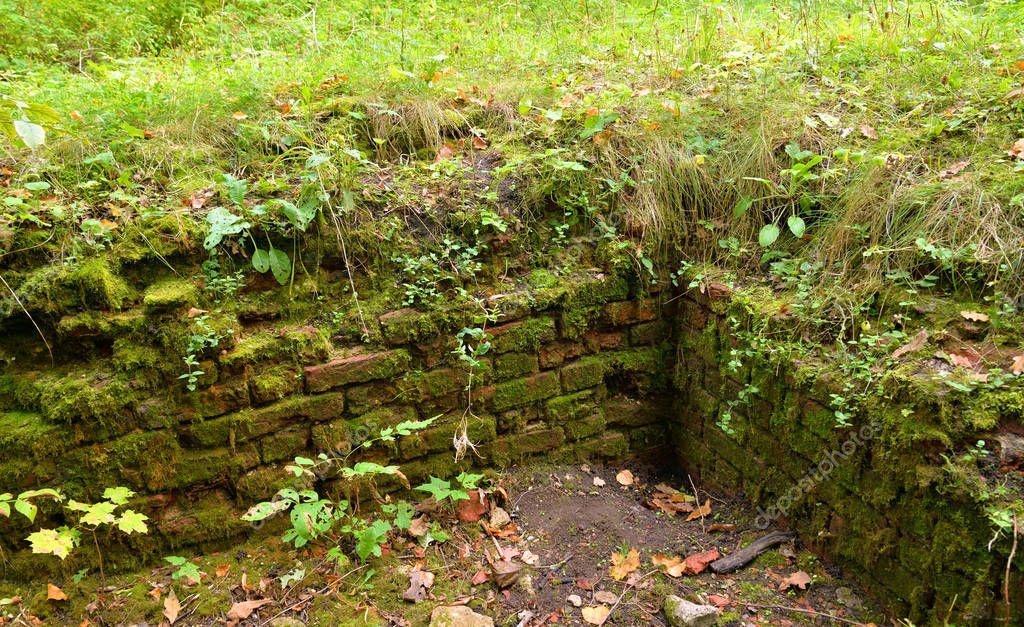 Old brick covered with moss. Old foundation of the destroyed building.