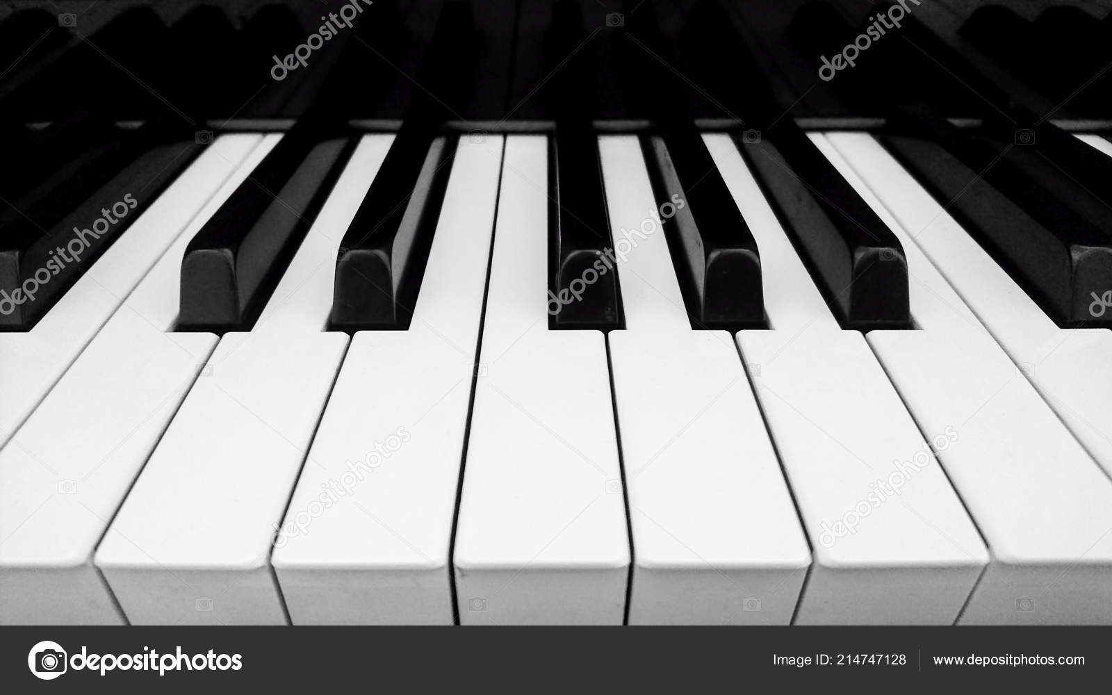 Closeup of piano key in black and white photo by