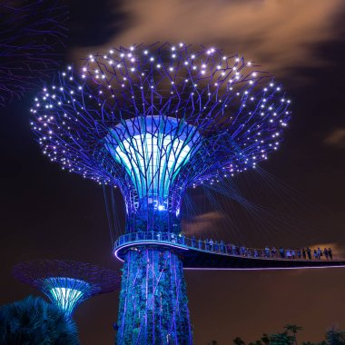 Singapore - Jun 22, 2018: Super Tree Grove plant structures in the Garden by the Bay in Singapore downtown after sunset lighted for a light and music show.