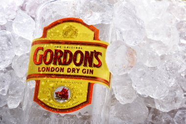 POZNAN, POL - JUN 18, 2020: Bottle of Gordon's London Dry, a brand of the world's best selling London Dry gin. It is owned by the British spirits company Diageo. stock vector