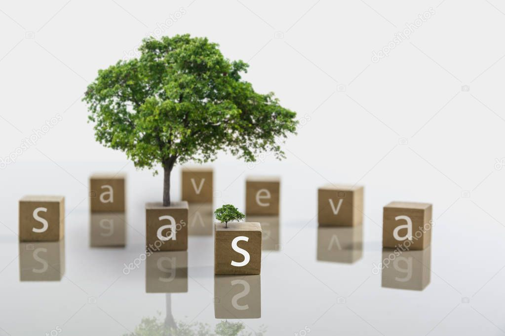 Text on dice with tree and copy space for insert text on white background.