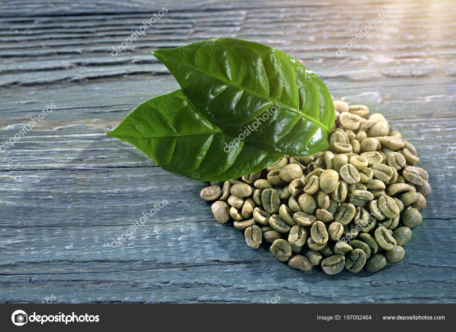 Green Coffee Beans Blue Background Stock Photo C Egal 197052464