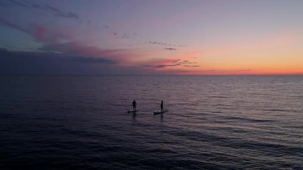 Aerial view couple silhouettes on paddle boards in sea during sunset