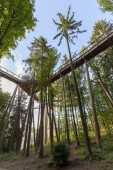 Fotografie landscape of the Saarland with treetop path at the saar panoramic point in Germany