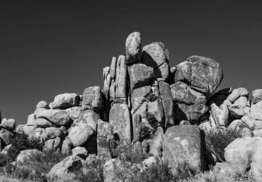 scenic rocks in Joshua Tree National Park  in Hidden valley