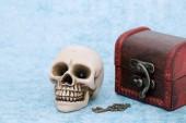 Fényképek emberi koponya régi kincsesláda a kék háttér