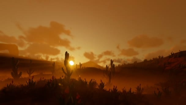 Saguaro Cactus in Desert against beautiful Morning Sun, camera panning, 4K