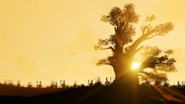 солнце картинки красиво