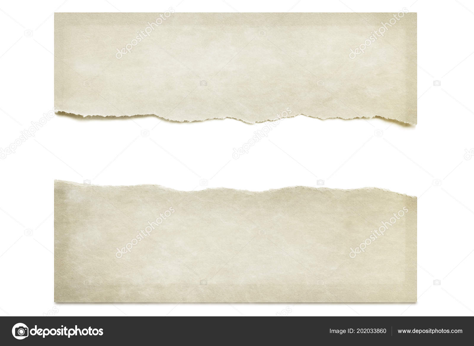 Paper Torn Half Isolated White Drop Shadow Space Text Stock Photo Image By Robynmac 202033860