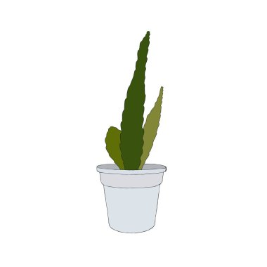 Hand drawn cactus in a pot. Vector illustration.