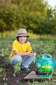 Chlapec s zelené rostliny a květináč v zahradě