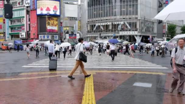 People With Umbrella Crossing Crosswalk