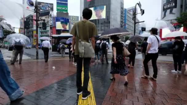 People With Umbrella Crossing Crosswalk