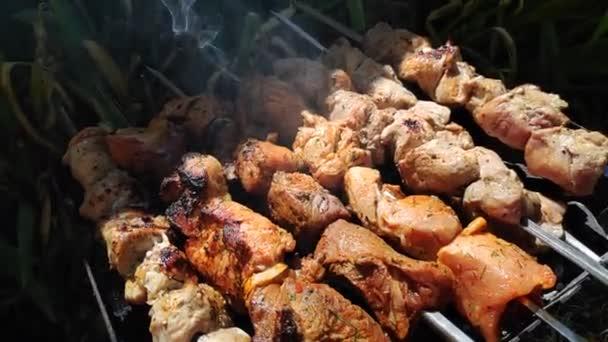 vaření masa v ohni. krásný lahodný kebab