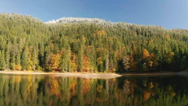 wunderschöner autmn Wald, der bei Sonnenuntergang leuchtet. Fliegen über farbenfrohe Bergflora