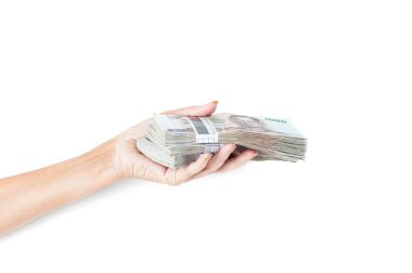 female hand holding money stacks on white background