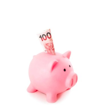 pink piggy bank with one hundred banknotes