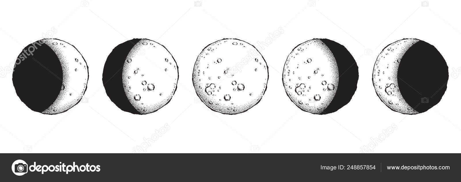 Antique Style Hand Drawn Line Art And Dot Work Moon Phases
