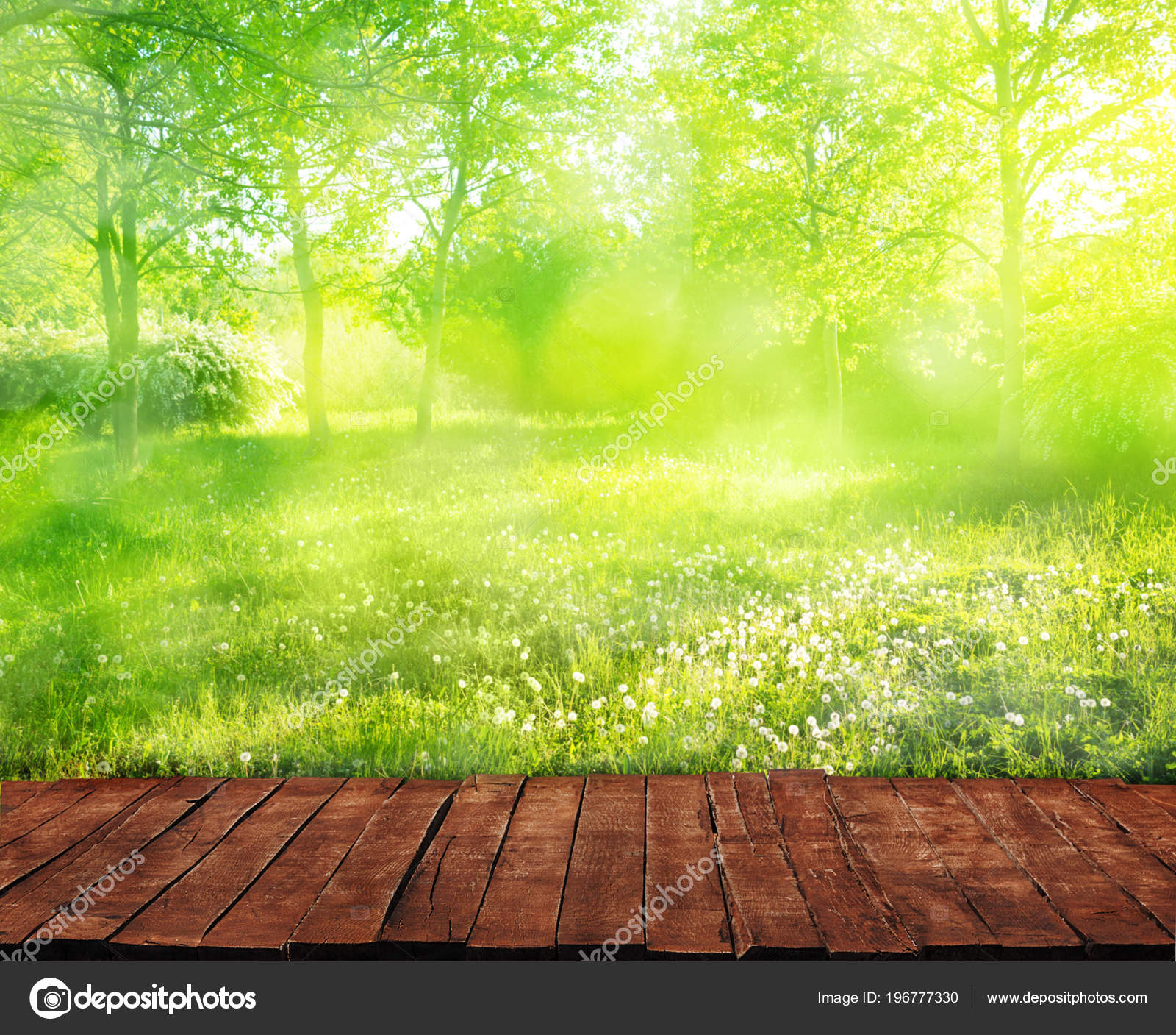 Ancienne Table Bois Herbe Dans Jardin — Photographie varuna ...