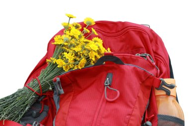 Modern hiking backpack, yellow daisies and water bottle