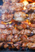 Meat kebab on skewers and grill with flame
