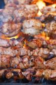 Fotografie Maso kebab na jehle a gril s plamenem