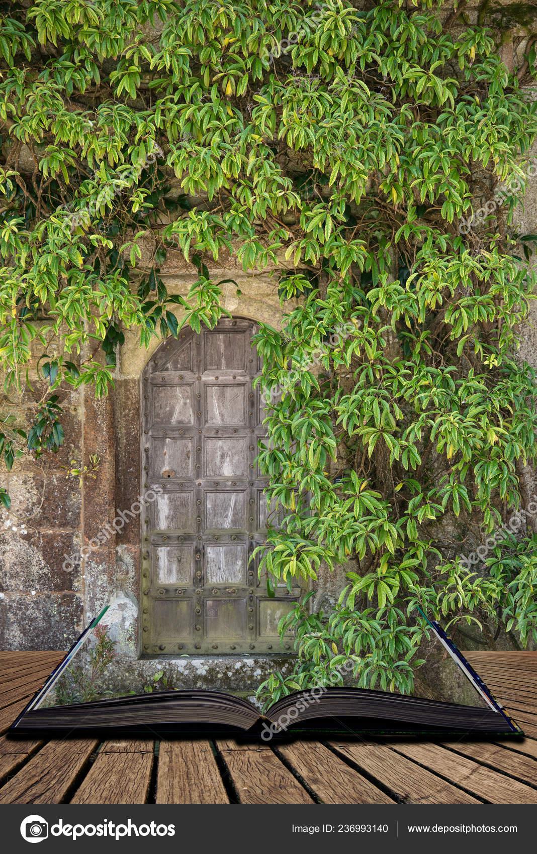 красивый старый викторианский особняк входная дверь