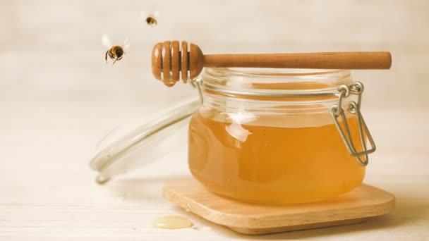 Cinemagraph - med z dřevěné honey naběračka. Včela létání. Živé fotografie.
